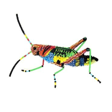 Trovelore, Painted Grasshopper Brooch